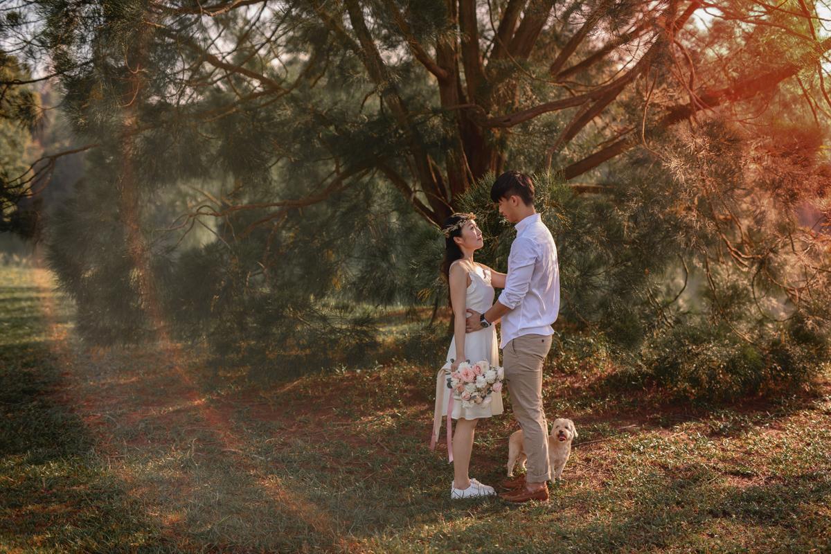 wedding photography testimonials